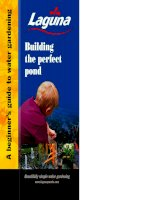 building the perfect pond