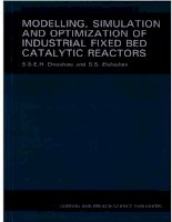 modelling  simulation and optimization of industrial fixed bed catalytic reactors topics in chemical engineering