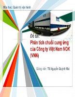 Thuyết trình phân tích chuỗi cung ứng của công ty việt nam NOK (VNN)