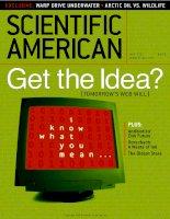 scientific american   -  2001 05  -  get the idea (tomorrow's web will)