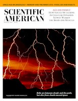 scientific american   -  1997 08  -  age and energy