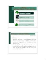 Bài giảng Con người và môi trường: Chương 2 - Nguyễn Nhật Huy