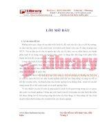 Kế toán bán hàng và xác định kết quả kinh doanh công ty cổ phần kỹ nghệ thực phẩm Việt nam II (Vifon II)