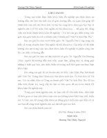 VAI TRÒ CỦA GIA ĐÌNH TRONG VIỆC GIÁO DỤC  GIỚI TÍNH CHO TRẺ VỊ THÀNH NIÊN Ở THÀNH PHỐ VIỆT TRÌ, TỈNH PHÚ THỌ