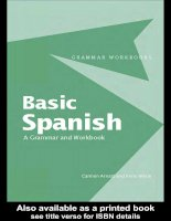 basic spanish a grammar and workbook