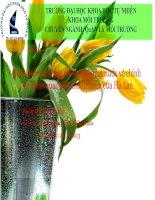 đề tài quá trình xây dựng chính sách nhà nước và chính sách liên quan đến môi trường của hà lan