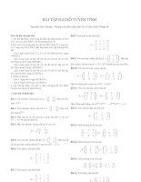 Bài tập đại số tuyến tính 2011