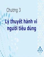 Bài giảng Kinh tế vi mô 1 - Chương 3 Lý thuyết hành vi người tiêu dùng