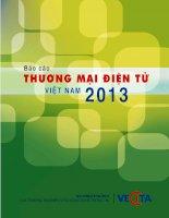 báo cáo thương mại điện tử việt nam 2013