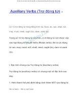 Tài liệu về auxiliary verbs