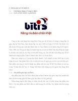 Chiến lược marketing quốc tế của bitis tại thị trường trung quốc