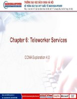 Chapter 06 teleworker services