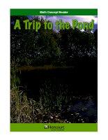 Math Concept Reader MCR g3 a trip to the pond