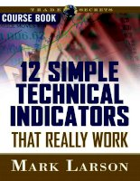 simple technical indicators that really work coursebook - larson 2007