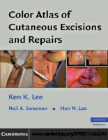 color atlas of cutaneous excisions and repairs  -  k. lee, et al., (cambridge, 2008)