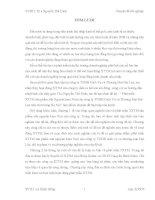 """Phát triển xúc tiến thương mại sản phẩm sữa nguyên kem Nuti của ông ty TNHH Dịch Vụ và Thương Mại Đạt Lộc trên thị trường Hà Nội""""  làm đề tài nghiên cứu trong bài luận văn tốt nghiệp của mình."""