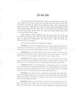 Nền móng công trình đậu văn ngọ, nguyễn việt kỳ, đại học quốc gia tp.hcm, 2009