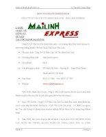 Tiểu luận dịch vụ vận tải hành khách công ty CP vận tải tốc hành Mai linh – Mai linh express