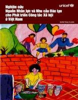 Nghiên cứu nguồn Nhân lực và Nhu cầu Đào tạo cho Phát triển Công tác Xã hội ở Việt Nam - Unicef