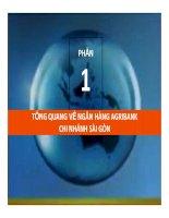Tiểu luận: Tổng quan về ngân hàng Agribank chi nhánh Sài Gòn