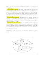 Đề cương môn kinh tế và quản lý môi trường (có hướng dẫn trả lời)