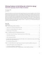 Khủng hoảng và hệ thống tài chính. Phân tích ứng dụng với kinh tế Mỹ và Việt nam