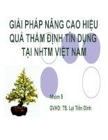 Thuyết trình: Giải pháp nâng cao hiệu quả thẩm định tín dụng tại ngân hàng thương mại Việt Nam