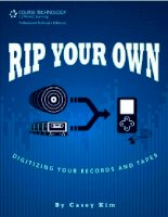 rip your own digitizing your records and tapes