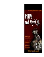 php 6 and mysql 6 bible
