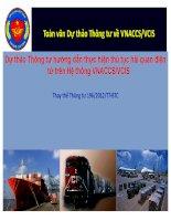 dự thảo thông tư hướng dẫn thực hiện thủ tục hải quan điện tử trên hệ thống vnaccs - vcis
