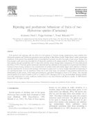 Ripening and postharvest behaviour of fruits of two hylocereus species (cactaceae)