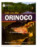 Life on the orinoco