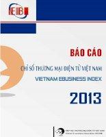 báo cáo chỉ số thương mại điện tử việt nam 2013