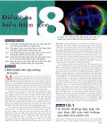 Campbell Chương 18 Điều Hòa Biểu Hiện Gen