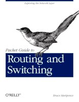 packet guide to routing and switching [electronic resource]