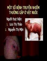 một số bệnh truyền nhiễm thường gặp ở vật nuôi
