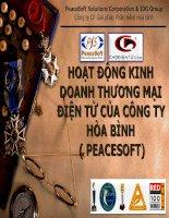 hoạt động kinh doanh thương mại điện tử của công ty hòa bình ( peacesoft)