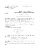 Đề thi học sinh giỏi Vật Lí lớp 9 tỉnh hải dương (kèm đáp án) đề 11