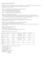 Đề thi tín dụng vào agribank KV1 2011