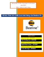 Tiểu luận phân tích chiến lược bán hàng của Beeline VN
