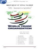 Hiệp định về nông nghiệp AOA (repaired)