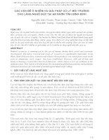 HỘI THẢO CÁC VẤN ĐỀ Ô NHIỄM VÀ GIẢI PHÁP XỬ LÝ MÔI TRƯỜNG CHO LÀNG NGHỀ ĐÚC TẠI AN NHƠN TỈNH BÌNH ĐỊNH