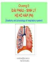 chương 5 giải phẩu – sinh lý hệ hô hấp (p4)