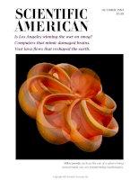 scientific american   -  1993 10  -  is los angeles winning the war on smog