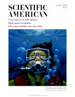 scientific american   -  1995 08  -  a new theory of aids latency