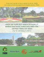 Quy hoạch và quản lý không gian xanh, chính sách bảo tồn và phát triển cây xanh.