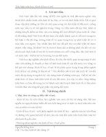 CHUYÊN ĐỀ KINH TẾ VĨ MÔ LÝ LUẬN HÌNH THÁI KINH TẾ - XÃ HỘI VÀ CON  ĐƯỜNG ĐI LÊN CNXH Ở NƯỚC TA