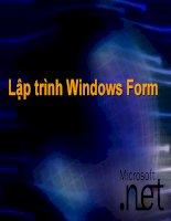 lập trình windows form