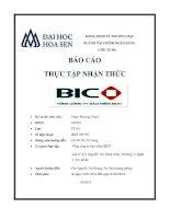 báo cáo thực tập nhận thức tại tổng công ty bảo hiểm bidv