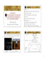 chương 2 cơ sở toán học của đo ảnh và các tính chất hình học của ảnh hàng không